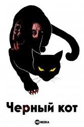 Смотреть Черный кот онлайн в HD качестве 720p