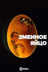 Смотреть Змеиное яйцо онлайн в HD качестве 720p