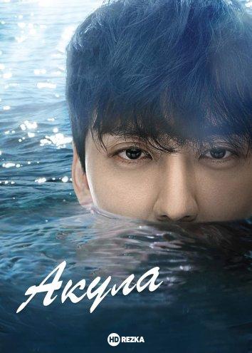 Смотреть Акула онлайн в HD качестве 720p