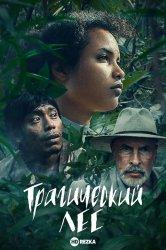 Смотреть Трагический лес онлайн в HD качестве 720p