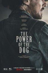 Смотреть Власть пса онлайн в HD качестве 720p