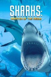 Смотреть Акулы: Монстры прессы онлайн в HD качестве 720p